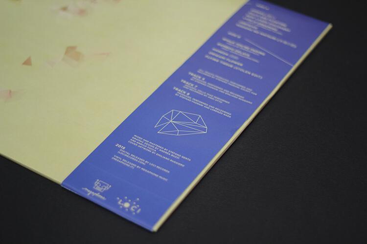 Beyond Stolen Notes - Vinyl Edition
